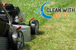 Lawn Care Fulham