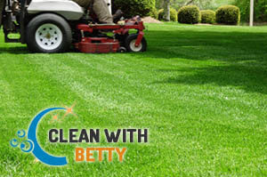 Lawn Mowing Fulham