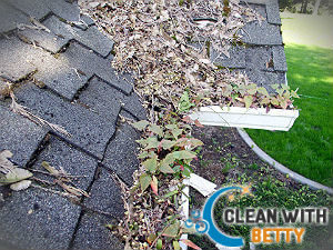 cleaning-gutter-fulham